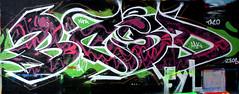 graffiti amsterdam (wojofoto) Tags: graffiti amsterdam wojofoto wolfgangjosten bcsd hof amsterdamsebrug flevopark nederland netherland holland