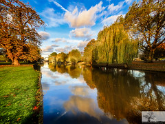 The River, Bedford (Rob Felton) Tags: felton robertfelton river thegreatouse greatouse theembankment embankment cloud clouds reflection autumnal autumn red gold blue tree trees salix weepingwillow willow
