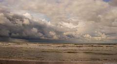La Manche - Platier d'Oye - Pas de Calais - France (jymandu) Tags: mer
