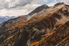 Autumn Slope - North Cascades, Washington (brianstowell) Tags: northcascades northcascadesnationalpark nps100 findyourpark nationalpark autumn fall fallcolors autumncolors washington washingtonstate wa nature mountain mountains cascades outdoors foliage larches goldenlarches larchmadness sky clouds cliffs brianstowell brianstowellphotography brianstowellphoto brianstowellphotos brianstowellphotographer oregon exploregon traveloregon or westcoast northwest nw pacificnorthwest pnw cascadia portlandphotographer oregonphotographer pacificnorthwestphotographer landscape landscapes landscapephotography landscapephotographer outdoor earth earthporn wildsights wildernessculture explore exploring exploration adventure wanderlust livefolk liveauthentic travel travelphotography canon 5d canon5d