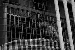 Let down (alejo.365shoots) Tags: bird cage bw birdcage 365