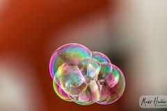 IMG_1769 (Boobo_oobo) Tags: croatia air bubbles blowing floating flying hrvatska zagreb