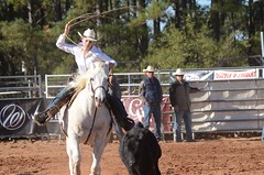 Bright White (Get The Flick) Tags: rodeo breakawaycalfroping cowboys cowgirls roping lariat lasso georgiahighschoolrodeoassociation