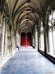 DSC_8072bw (Roelofs fotografie) Tags: wilfred roelofs nikon d3200 dutch holland 2016 utrecht church old heritage color architecture art building faith arches arch dom cozy sun