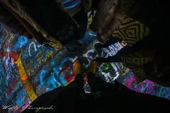 (Joshua Wells Photography) Tags: subaru forester centralia pa church blackandwhite canon t4i 650d bowerlens sigmalens birds chicken cows pigs goats farm sanctuary paint tagging graffiti rt61