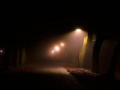 Weekend Project: Foggy night walk 2 (Thiophene_Guy) Tags: thiopheneguy originalworks olympustoughtg4 tg4 olympustg4 olympusstylustg4 tough snow night utataweekendproject utata:project=night negativespace