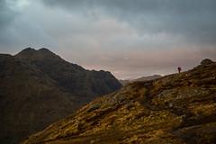 Ben Donich (absentadrinker) Tags: scotland scottish highlands mountain sky storm rain moody camp camping wildcamp climbing olympus dark outdoors alone hike outdoor landscape arrochar corbett donich