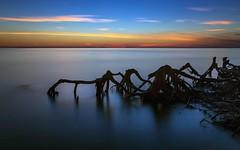 Creepy Lake (Mohan Krish Photography) Tags: canon24105 canon6d nature ndfilter longexposure landscape lake