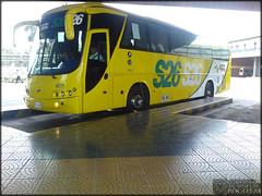 Expreso Palmira 8129 (...*Buses Y Camiones De Bogota*...) Tags: autobus colombia busologia bus bogota expreso palmira 8129