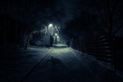 Night walk (Digic-Vision) Tags: canon eos 6d sigma 35mm 14 art night walk