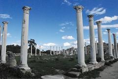 Cipro (kizeme) Tags: europa cipro salamina