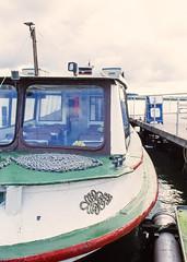 Regen in Schleswig (Drte Krell) Tags: meinfilmlab wwwmeinfilmlabde m645 mamiya provia fuji dia slide 6x45 120 film analog mediumformat mf schlei schleswigholstein
