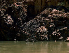 35-758 (ndpa / s. lundeen, archivist) Tags: nick dewolf nickdewolf color photographbynickdewolf 1970s 1973 1972 film 35mm 35 reel35 arizona northernarizona southwesternunitedstates canyon marblecanyon grandcanyon coloradoriver raftingtrip raftingexpedition rafting river riverrafting rock rocks rocky canyonwall canyonwalls watersedge riversedge partial scratches scratched