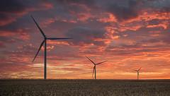 Wind Farm (Michael Waterman) Tags: challengegroupgame challengegamewinner