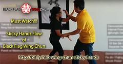 Wing Chun Sticky Hand Basic Rolling (Hek Ki Boen Eng Chun) Tags: ip man wing chun yip donnie yen black flag hek ki boen
