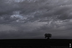 fool on the hill in the morning (alamond) Tags: fool hill morning blue sky cloud clouds tree lonely dramatic landscape hut canon 7d markii mkii llens ef 1740 f4 l usm alamond brane zalar