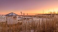 Hidden (Peter Vestin) Tags: nikondf sigma24mmf14dghsmart siruin3204x siruik30x adobecreativecloudphotography topazlabscompletecollection alstersstrandbad alster karlstad vrmland sweden vnern nature landscape seascape sunset