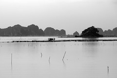 Sailing the Still Waters (steve_whitmarsh) Tags: vietnam asia orient halongbay water sea rocks bw monochrome