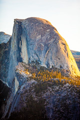 Half Dome (Thomas Hawk) Tags: halfdome yosemite sunrise newyearsday sky montaña sierra eeuu fav10 fav25 fav50 fav100