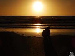 PC060196 (Tam Gugliermo) Tags: beach ocean nature sky naturaleza boy photography fotografia argentina crab animals dog wave dawn sun sunshine