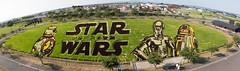 Rice paddy art -2015 Star Wars (yari3180m) Tags: japan landscape starwars r2d2 aomori   c3po  inakadate bb8 ricepaddyart