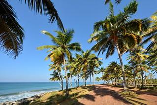 India - Kerala - Varkala - Coastline - 17
