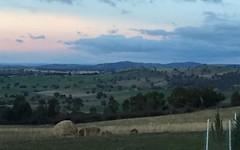 513 Reids Flat Road, Bigga NSW