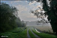 Vigevano (Pv) - Campagna (alfvet) Tags: landscape natura campagna autunno paesaggi veterinarifotografi