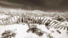 Cape Cod Fences (imben2images) Tags: bw beach interesting provincetown capecod massachusetts northtruro benkuropat