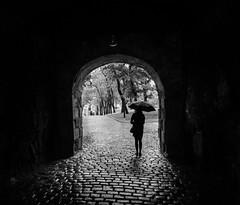 Esperando a que escampe [Explore] (BuRegreg) Tags: street city urban oslo norway norge calle streetphotography ciudad explore urbana noruega streetphoto norvège callejera 2015