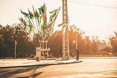 Policemen at North Korea's 70th anniversary of Workers' Party (reubenteo) Tags: city red tourism war asia fireworks military korea parade communism celebration kimjongil vip metropolis comrade socialism tanks workersparty northkorea pyongyang 70thanniversary dprk kimilsung kimjongun