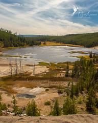 Yellowstone Vista (Rogue Aurora Photography) Tags: travel landscape yellowstonenationalpark yellowstone wyoming travelphotography yellowstonenp landscapephotography yellowstonevista rogueaurora