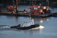 Blackhawk II (drmack2) Tags: bc tugboat derrick ge iv barge fraserriver newwestminster quayside gisbourne frpd