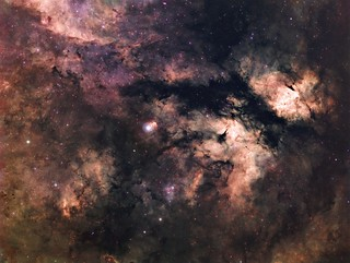 Sadr region nebula