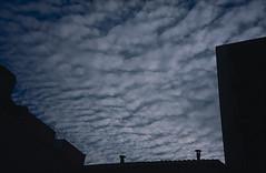 Núvols 81 - Jordi Sacasas