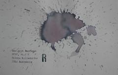 Arbeit 23 (Harald Reichmann) Tags: waldviertel kamptal schönberg zweigelt barrique 2010 wein rotwein alkohol farbe verteilung muster signatur visualisierung r arbeit papier kraft energie arbeit23 text information möglichkeit