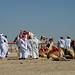 doha camel race (2)
