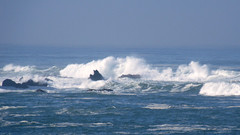 Waves Off Todd's Point (keltickelton) Tags: mendocinocoast hwy1