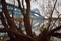 South Grand Island Bridge behind Trees, Buffalo, NY (DTD_0882) (masinka) Tags: tonawanda newyork unitedstates branches bridge south grandisland niagara river mighty architecture buffalo ny usa i190 thruway etbtsy buffalony buffalove 716