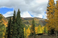 Above St. Elmo (Patricia Henschen) Tags: chaffeecounty sawatch range mountains mountain aspen autumn fall color gold silver mine mines mining ruins ghosttown stelmo mtprinceton chalkcreek nathrop colorado canyon sanisabelnationalforest grade trail leafpeeping fallcolor pathscaminhos county road backroad clouds