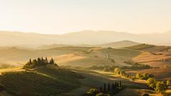 Tuscan Sunrise (drusus) Tags: italy travel agriturismo belvedere farm goldenhour hills landscape pienza sanquirico silence softlight sunrise tuscany valdorcia villa