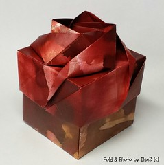 Rose Box by Shin-Han-Gyo (esli24) Tags: rosebox shinhangyo rosenschachtel origamibox ilsez esli24 hillizenz papierfalten origami origamischachteln