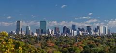Boston From the South (davelemi) Tags: boston autumn fall olympus omd em1 foliage skyscrapers skyline omg