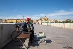 Crdoba (JOAO DE BARROS) Tags: accordion musician people street performer crdoba spain joo barros