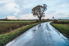 Rainy Days (JonnyVSM) Tags: rain weather water slippery road countryside york yorkshire stamford bridge east yorks north england fields tree blue green sky cloud clouds wow fall autumn november wet storm showers shower