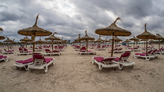 Cloudy Alcudia, empty beach beds. (CWhatPhotos) Tags: cwhatphotos camera photographs photograph pics pictures pic picture image images foto fotos photography artistic that have which contain with olympus four thirds 43 spanish spain mallorca majorca island october 2016 weather alcudia empty beach parasol parasols cloudy overcast clouds cloud