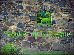 """Rocky"" (dianealdrich - Please read my profile) Tags: rockydelafuente roquedelafuente delafuente rocky stonewall stones rocks window greengrass grassisgreener opportunity possibilities presidentialcandidate 2016 2020 reformparty reform choices"