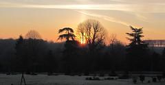 Sunrise Chateau du Val (kitmasterbloke) Tags: stgermainenlaye chateauduval frost cold morning sunrise sun france iledefrance garden trees winter