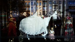 kreuzberg (kadircelep) Tags: berlin streetphotography turkish culture people bride wedding dress shopping fashion horse