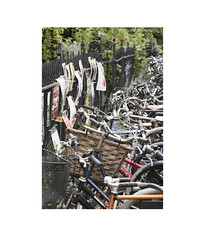 Bikes with posters (Pictures from the Ghost Garden) Tags: nikon d7100 dslr 18105mm unitedkingdom uk cambridgeshire cambridge urban landscape urbanlandscape street bikes bicycles buildings architecture windows posters